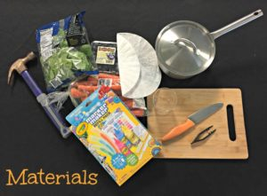 Natural Dye Markers Materials List